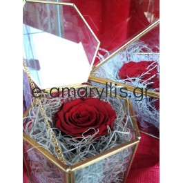 Αποχυμωμένα τριαντάφυλλα